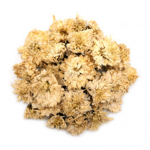 Хризантема - Цзюй Хуа
